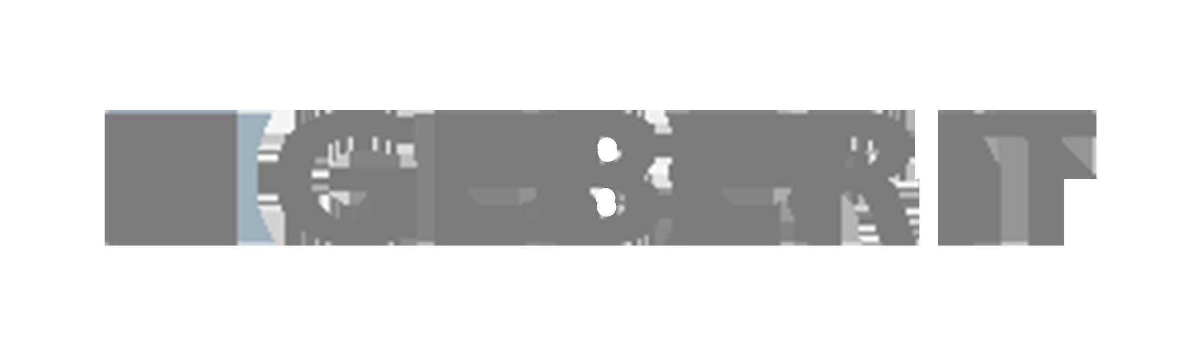 Logo_Geberit_grau