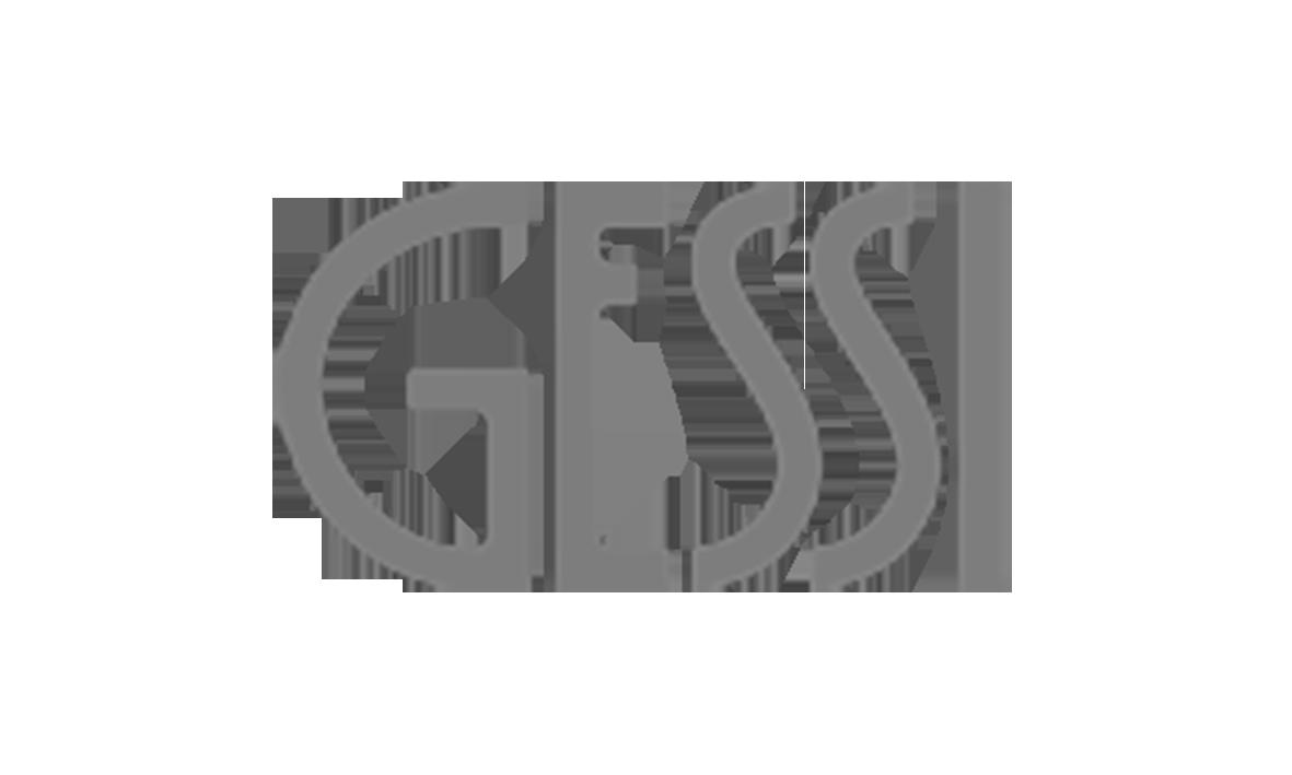 Logo_Gessi_grau